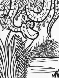 animal coloring pages jungle animals and coloring pages on pinterest