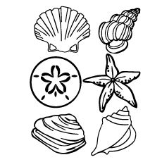 Shell Clip Art Black And White Sea Shell Clipart Shells