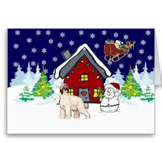 1000 Images About Afghan Hound Christmas Cards On