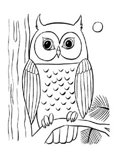 owl coloring pages owl and coloring pages on pinterest