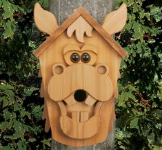 Crazy Cedar Men Birdhouse Plans Trace Amp Cut Full Sized