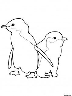 coloring pages animal coloring pages and animals on pinterest