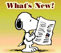 Image result for SNOOPY AND THE NEWS