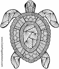 seahorses coloring pages and coloring on pinterest