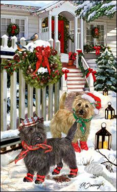 1000 Images About Christmas Dogs On Pinterest Christmas