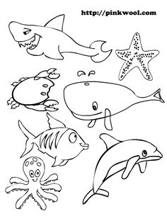 1000 images about ocean on pinterest animal coloring pages