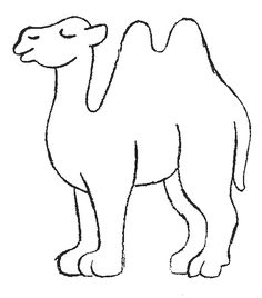 camel search and google on pinterest