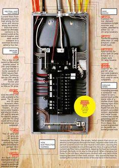 Horse Trailer Electrical Wiring Diagrams |  lookpdfresultelectrictrailerbrakewiring