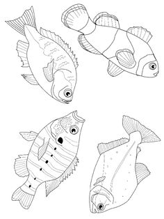 starfish coloring and coloring pages on pinterest