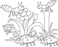 coloring insects and coloring pages on pinterest