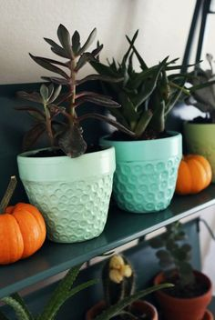 Glow In The Dark Paint On Pots Spray Paint At Home Depot For 10 Ideas Pinterest Glow