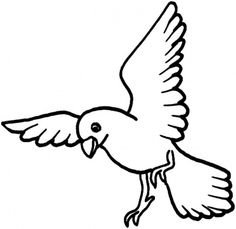 pigeon coloring pages and coloring on pinterest