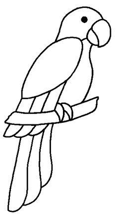 parrot coloring pages cinderella pinterest parrots coloring