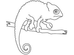 1000 images about chameleons for creative coloring on pinterest