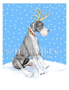 1000 Images About Mantle Great Danes On Pinterest