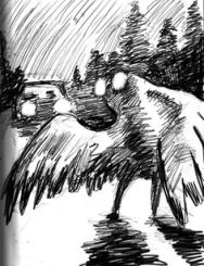 Image result for The Mothman free images