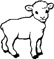 god jesus jesus is and lamb on pinterest