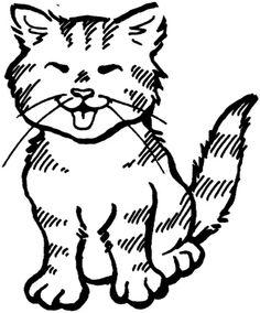 explora kitty animales de y mucho más