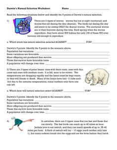 Darwin S Natural Selection Worksheet Answers Additionally