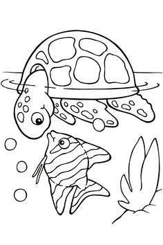 animal tracks track and coloring pages on pinterest
