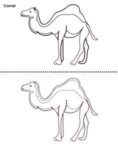 how to draw to draw and camel on pinterest