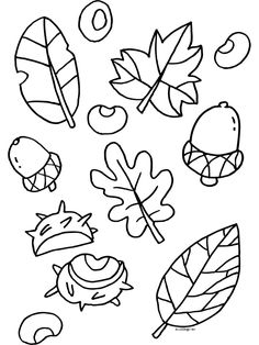 1000 images about thema herfst allerlei on pinterest page borders