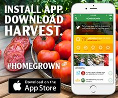 Vegetable Garden Planner App Ipad What To Plant Now Organic