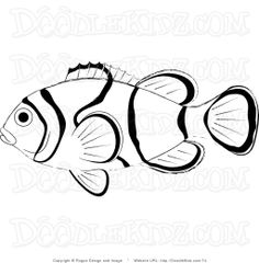 1000 images about zoo on pinterest coloring pages peregrine