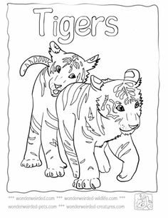baby tigers worksheets and coloring pages on pinterest