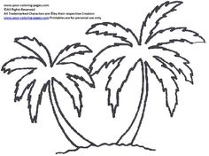 palm trees palms and coloring pages on pinterest