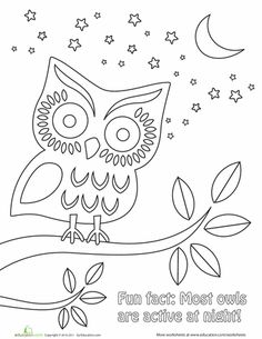 1000 images about coloring pages for kids on pinterest horse