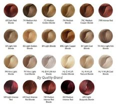 Ion Color Brilliance Chart Google Search