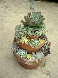 Tiered succulent garden