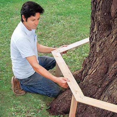 How to Build a Tree Bench step by step…