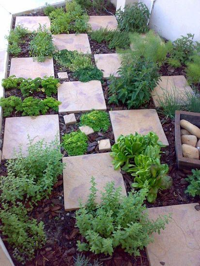 easy access & fragrant herb garden