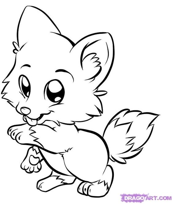 wolf for kids draw baby wolf cute animals