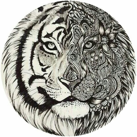 adult tiger coloring page colorings pages pinterest tigers
