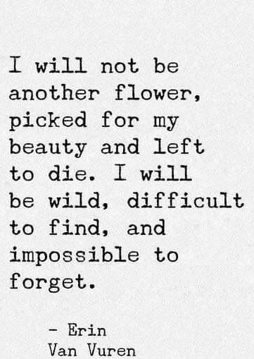 I will not be another flower, picked for my beauty and left to die. I will be wild, difficult to find and impossible to forget. Erin Van Vuren: