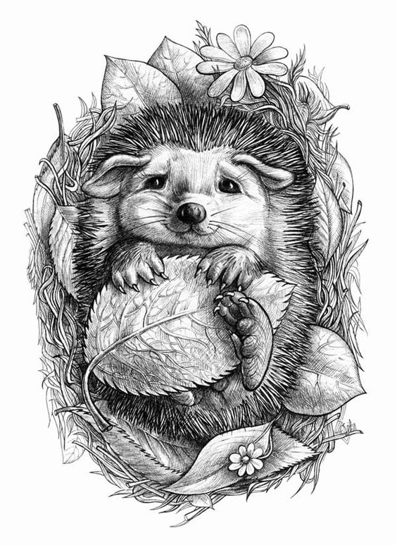 Little hedgehog by ELINA CHERIANIDOU Alexandroupoli