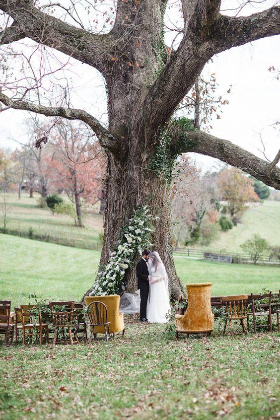 Tree wedding ceremonies, Oak tree wedding and Oak tree on