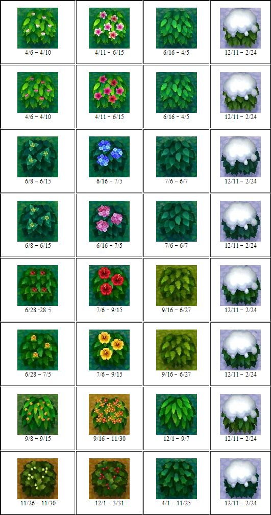 All flowers/bushes in Animal Crossing New Leaf; Animal