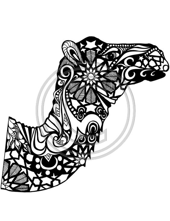 project 3 camel and coloring pages on pinterest
