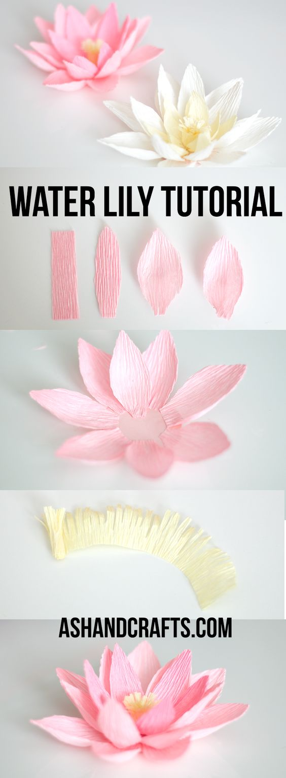 Crepe Paper Water Lily Tutorial   ashandcrafts.com: