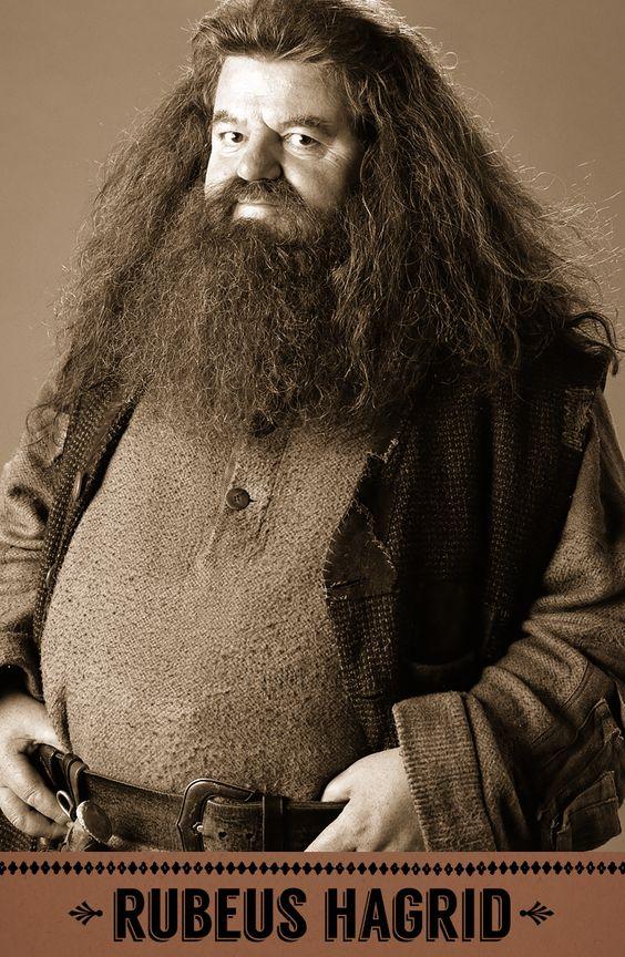 Rubeus Hagrid, Care of Magical Creatures professor, Keeper