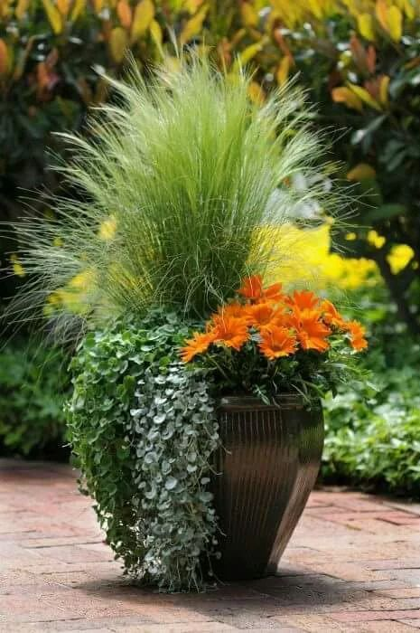 Tradition from Summer to Fall planter.: