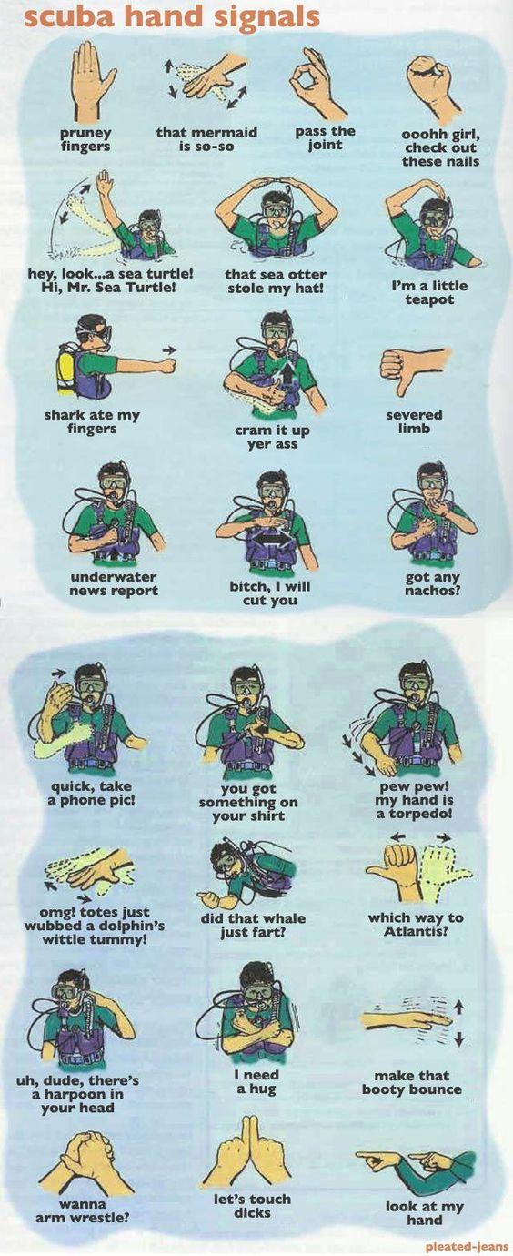 Scuba Hand Signals chart