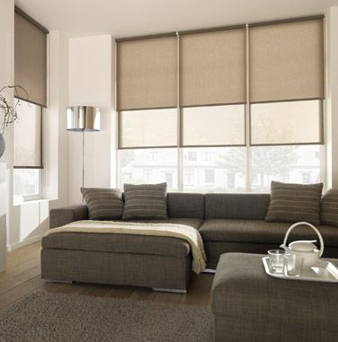 holland blinds with dual translucent/blockout