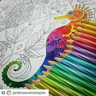Seahorse Lost Ocean By Johanna Basford Drawings