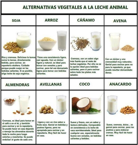 Beneficios para la salud de las leches vegetales: