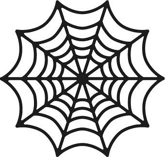 spider webs spider and free spider on pinterest